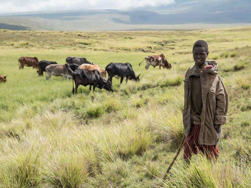 Ngorongoro Highlands Trek