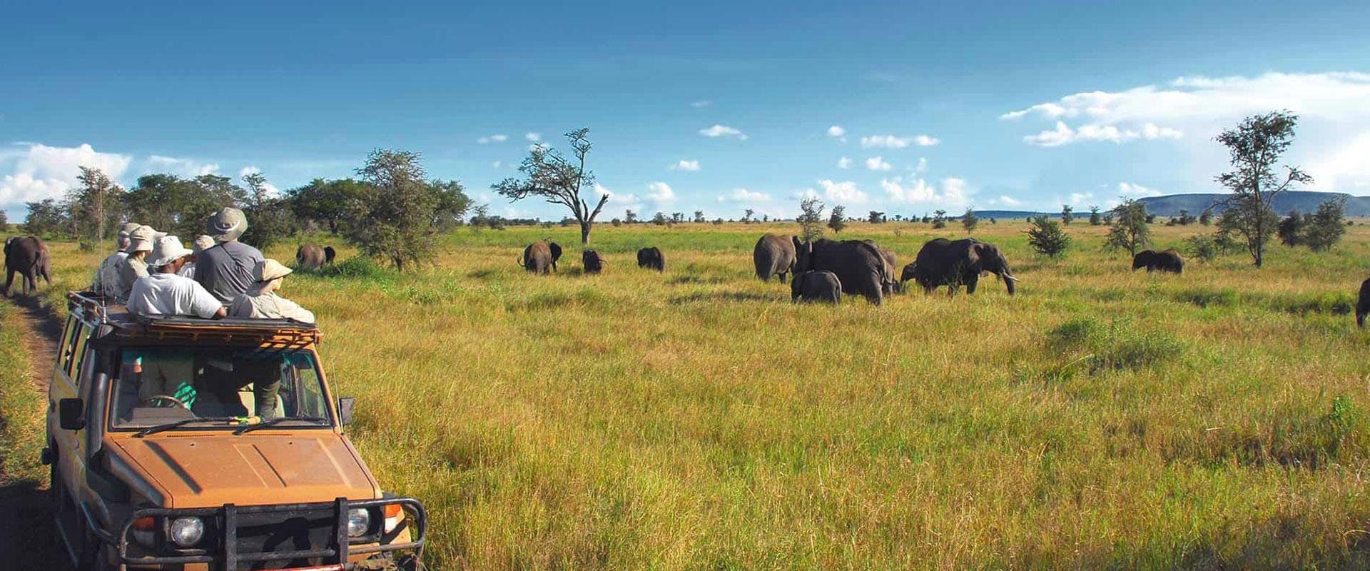 Tanzania Travel Advice